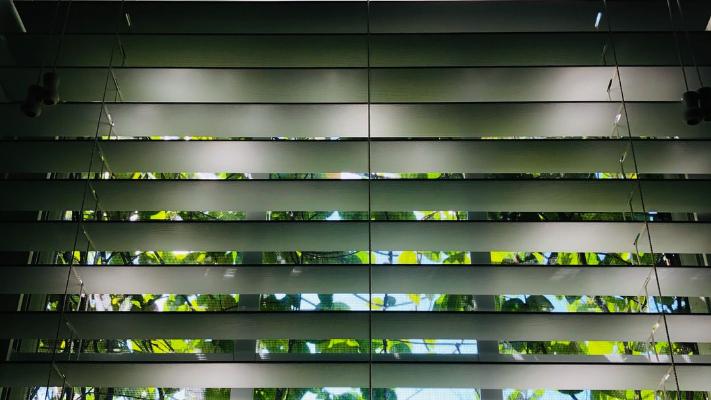 automated window shades